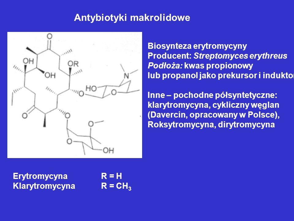 Antybiotyki makrolidowe ErytromycynaR = H KlarytromycynaR = CH 3 Biosynteza erytromycyny Producent: Streptomyces erythreus Podłoża: kwas propionowy lu