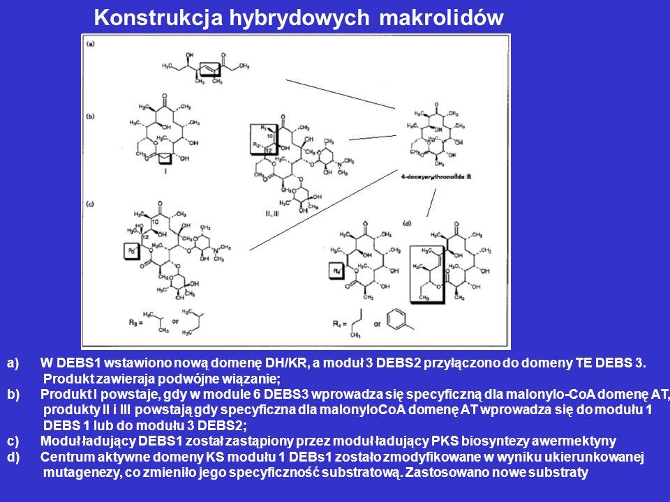 Konstrukcja hybrydowych makrolidów a)W DEBS1 wstawiono nową domenę DH/KR, a moduł 3 DEBS2 przyłączono do domeny TE DEBS 3. Produkt zawieraja podwójne