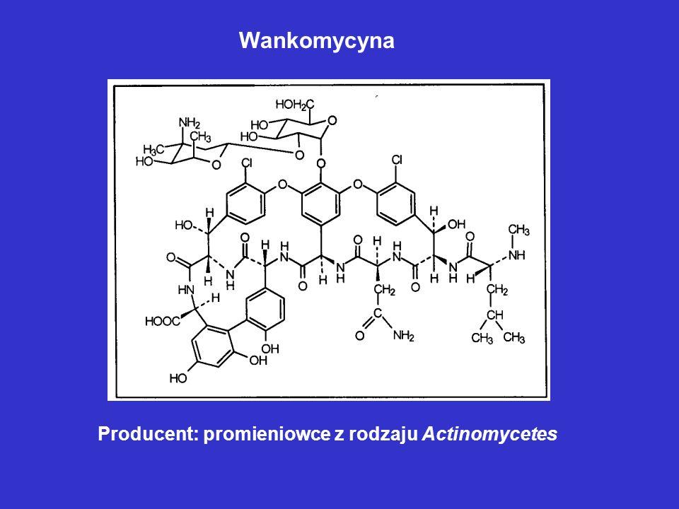 Wankomycyna Producent: promieniowce z rodzaju Actinomycetes
