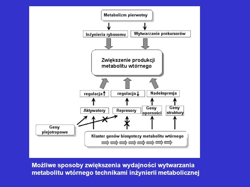 Biosynteza erytromycyny Podłoże produkcyjne: Skład: glukoza i/lub skrobia, mąka sojowa lub kukurydziana, drożdże, siarczan amonu, NaCl, CaCO 3, fosforany (5 – 15 mM), propanol lub kwas propionowy (dawki po 5 ml/L podłoża w pierwszej połowie procesu); Warunki: pH: 7 –7,2, maleje do 6,0, potem rośnie do 8,0; temperatura: 30 – 32 C w fazie wzrostu, 28 – 32 C w fazie produkcji.
