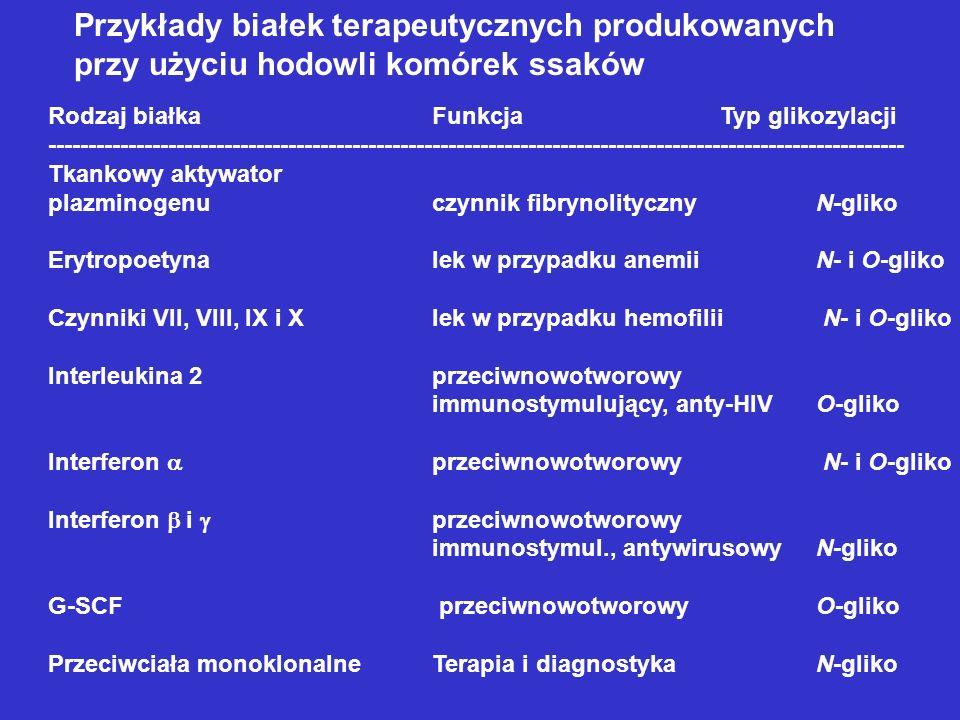 Przykłady białek terapeutycznych produkowanych przy użyciu hodowli komórek ssaków Rodzaj białkaFunkcjaTyp glikozylacji -------------------------------