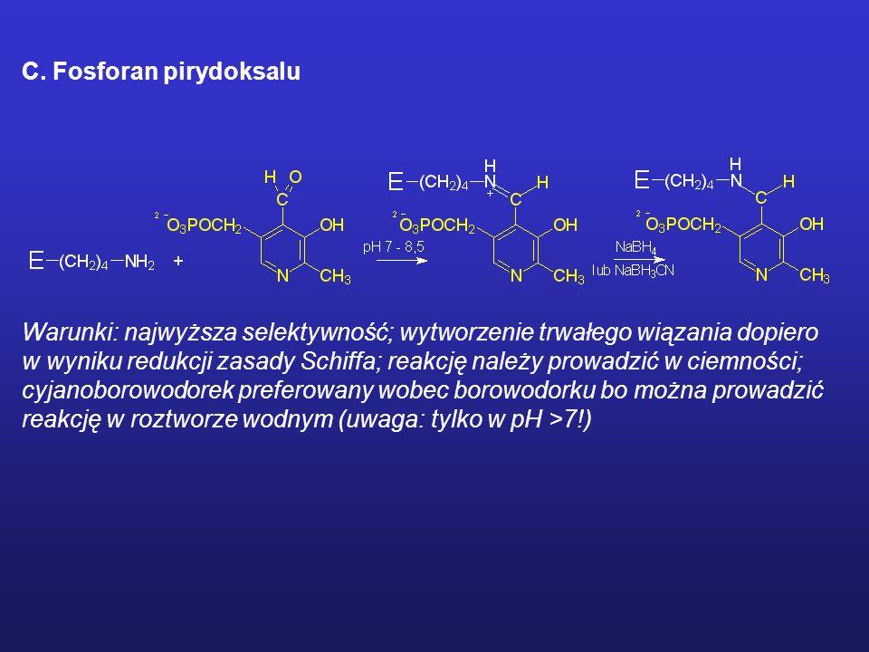 MODYFIKACJE CHEMICZNE ENZYMU Odczynniki ukierunkowane na reszty lizylowe A. Imidoestry Warunki: długie czasy reakcji B. Kwas 2,4,6-trinitrobenzenosulf