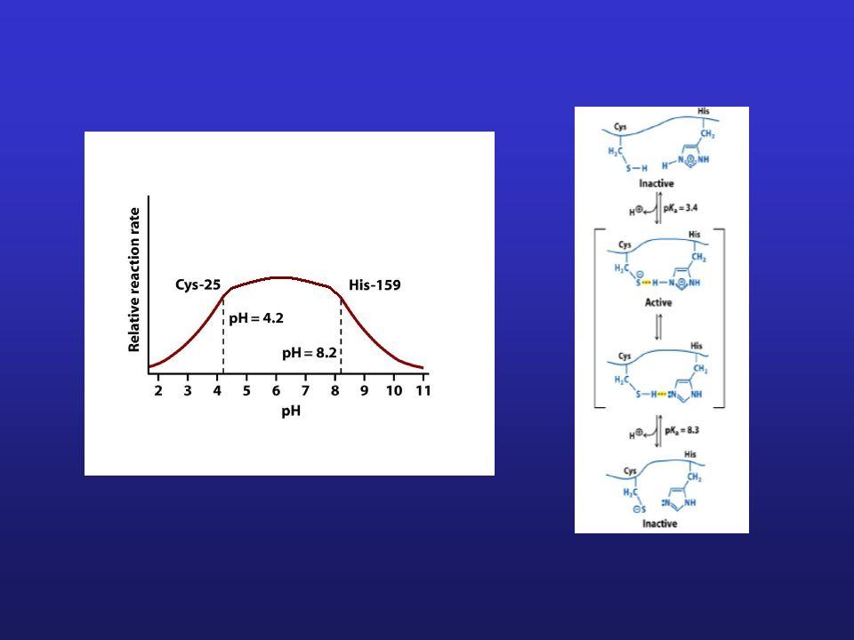Analiza zależności pK a reszt jonizujących od polarności rozpuszczalnika pozwala na określenie stanu jonizacji reszty -CO 2 H -COO - + H + W tym przyp