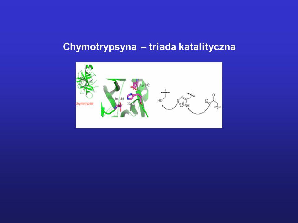 Warunki pomiaru: - stężenia enzymu i substratu na porównywalnym poziomie - techniki pomiarowe umożliwiające określanie niewielkich zmian stężenia w kr