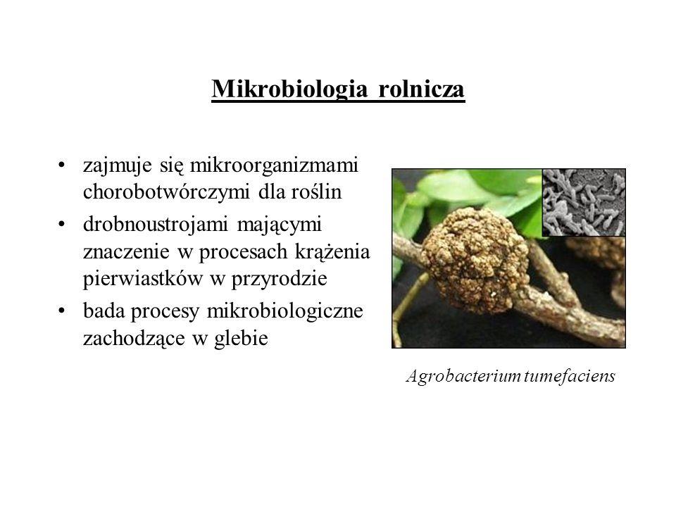 Mikrobiologia rolnicza zajmuje się mikroorganizmami chorobotwórczymi dla roślin drobnoustrojami mającymi znaczenie w procesach krążenia pierwiastków w
