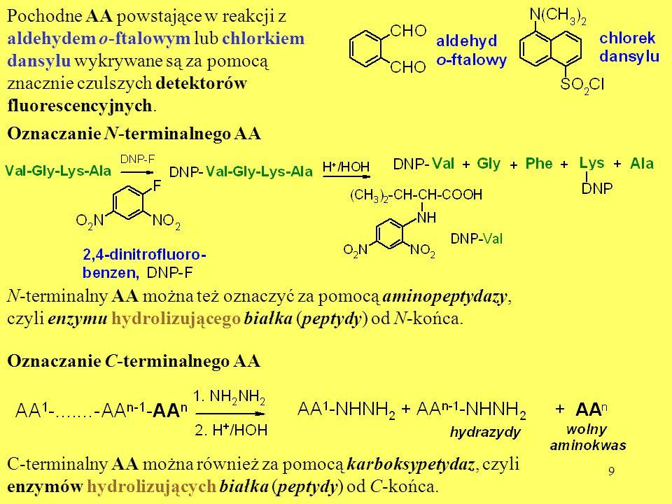 10 Oznaczanie sekwencji AA w białku Sekwencję AA oznacza się często za pomocą degradacji Edmana.