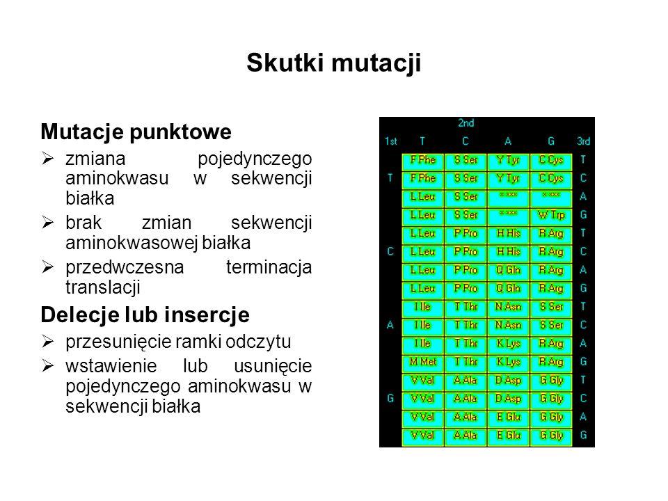 Skutki mutacji Mutacje punktowe zmiana pojedynczego aminokwasu w sekwencji białka brak zmian sekwencji aminokwasowej białka przedwczesna terminacja tr