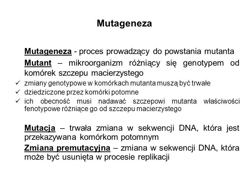 Mutageneza Mutageneza - proces prowadzący do powstania mutanta Mutant – mikroorganizm różniący się genotypem od komórek szczepu macierzystego zmiany g