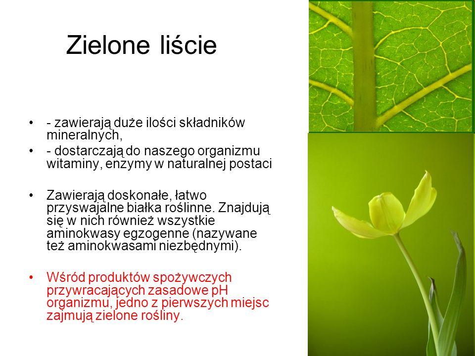 Zielone liście - zawierają duże ilości składników mineralnych, - dostarczają do naszego organizmu witaminy, enzymy w naturalnej postaci Zawierają dosk