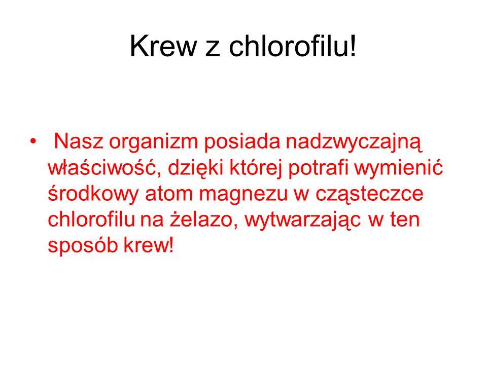 Krew z chlorofilu! Nasz organizm posiada nadzwyczajną właściwość, dzięki której potrafi wymienić środkowy atom magnezu w cząsteczce chlorofilu na żela