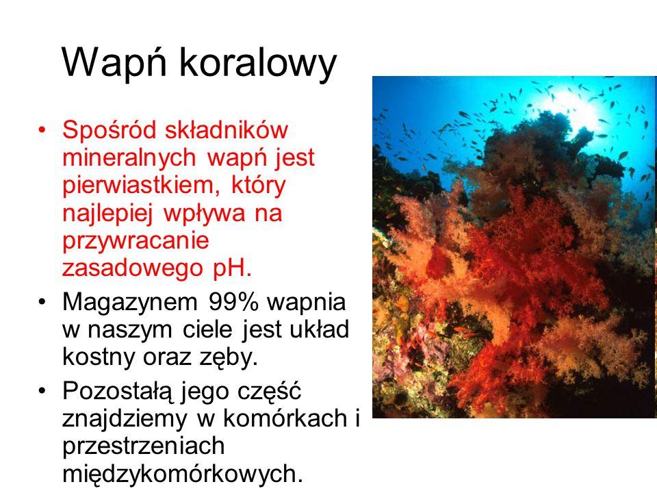 Wapń koralowy Spośród składników mineralnych wapń jest pierwiastkiem, który najlepiej wpływa na przywracanie zasadowego pH. Magazynem 99% wapnia w nas