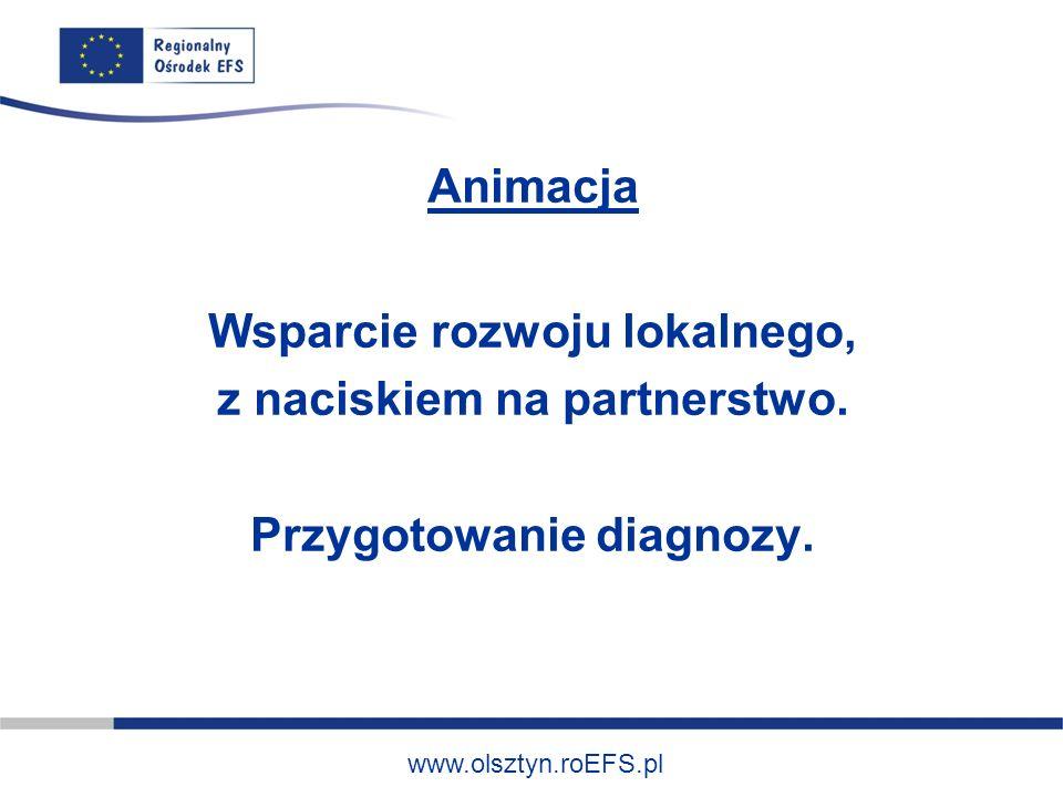 www.olsztyn.roEFS.pl Animacja Wsparcie rozwoju lokalnego, z naciskiem na partnerstwo. Przygotowanie diagnozy.