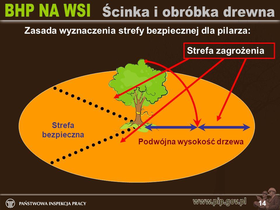 14 Strefa bezpieczna Podwójna wysokość drzewa Strefa zagrożenia Zasada wyznaczenia strefy bezpiecznej dla pilarza: