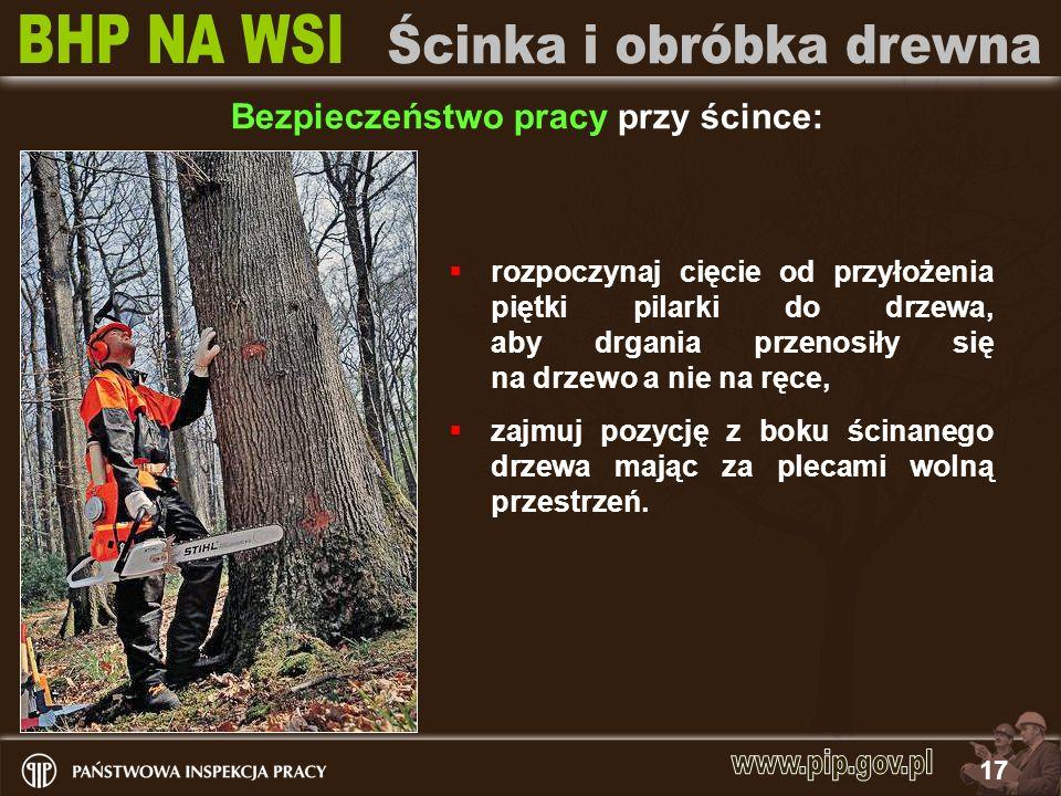 17 rozpoczynaj cięcie od przyłożenia piętki pilarki do drzewa, aby drgania przenosiły się na drzewo a nie na ręce, zajmuj pozycję z boku ścinanego drz