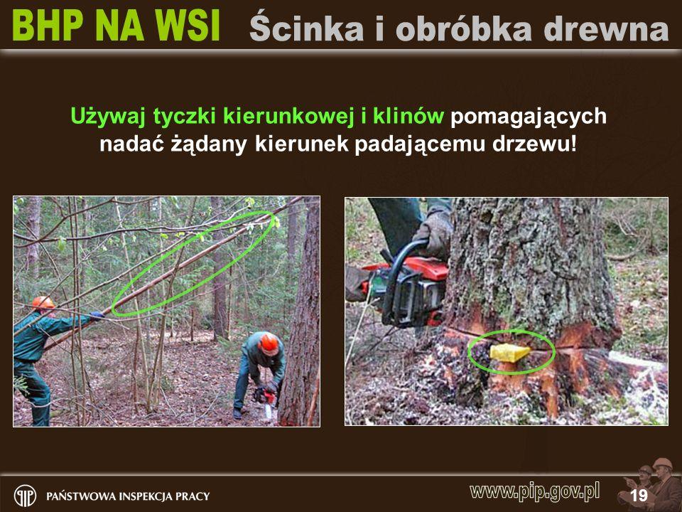 19 Używaj tyczki kierunkowej i klinów pomagających nadać żądany kierunek padającemu drzewu!