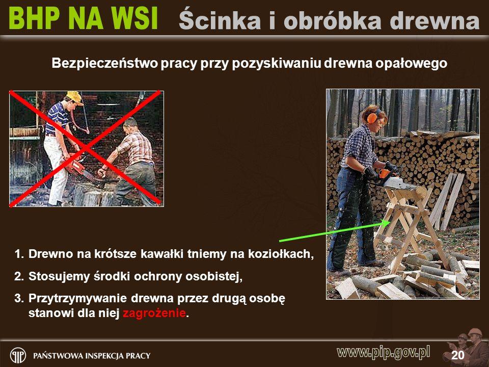 20 Bezpieczeństwo pracy przy pozyskiwaniu drewna opałowego 1.Drewno na krótsze kawałki tniemy na koziołkach, 2.Stosujemy środki ochrony osobistej, 3.P