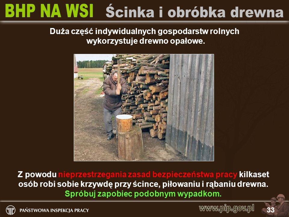 33 Duża część indywidualnych gospodarstw rolnych wykorzystuje drewno opałowe. Z powodu nieprzestrzegania zasad bezpieczeństwa pracy kilkaset osób robi