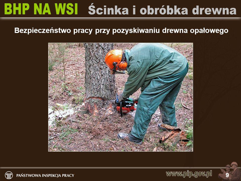 20 Bezpieczeństwo pracy przy pozyskiwaniu drewna opałowego 1.Drewno na krótsze kawałki tniemy na koziołkach, 2.Stosujemy środki ochrony osobistej, 3.Przytrzymywanie drewna przez drugą osobę stanowi dla niej zagrożenie.