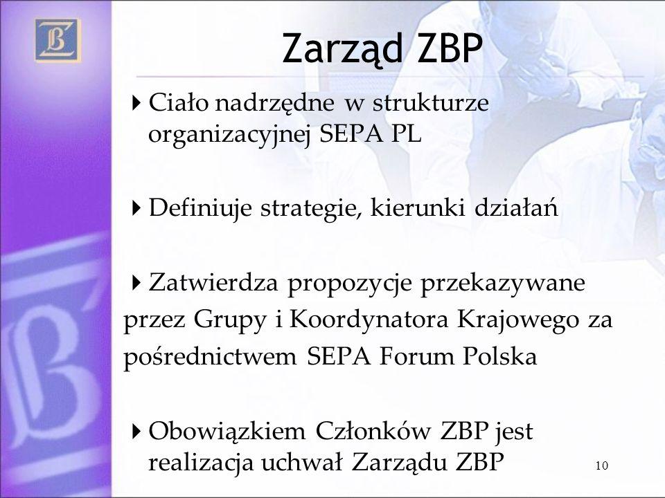 10 Zarząd ZBP Ciało nadrzędne w strukturze organizacyjnej SEPA PL Definiuje strategie, kierunki działań Zatwierdza propozycje przekazywane przez Grupy