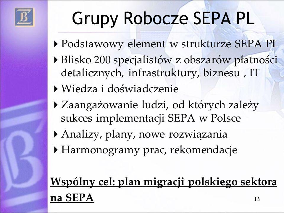 18 Grupy Robocze SEPA PL Podstawowy element w strukturze SEPA PL Blisko 200 specjalistów z obszarów płatności detalicznych, infrastruktury, biznesu, I