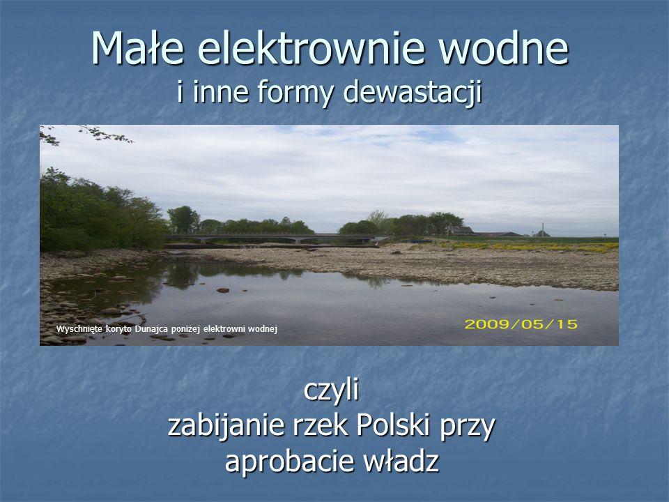 Małe elektrownie wodne i inne formy dewastacji czyli zabijanie rzek Polski przy aprobacie władz Wyschnięte koryto Dunajca poniżej elektrowni wodnej