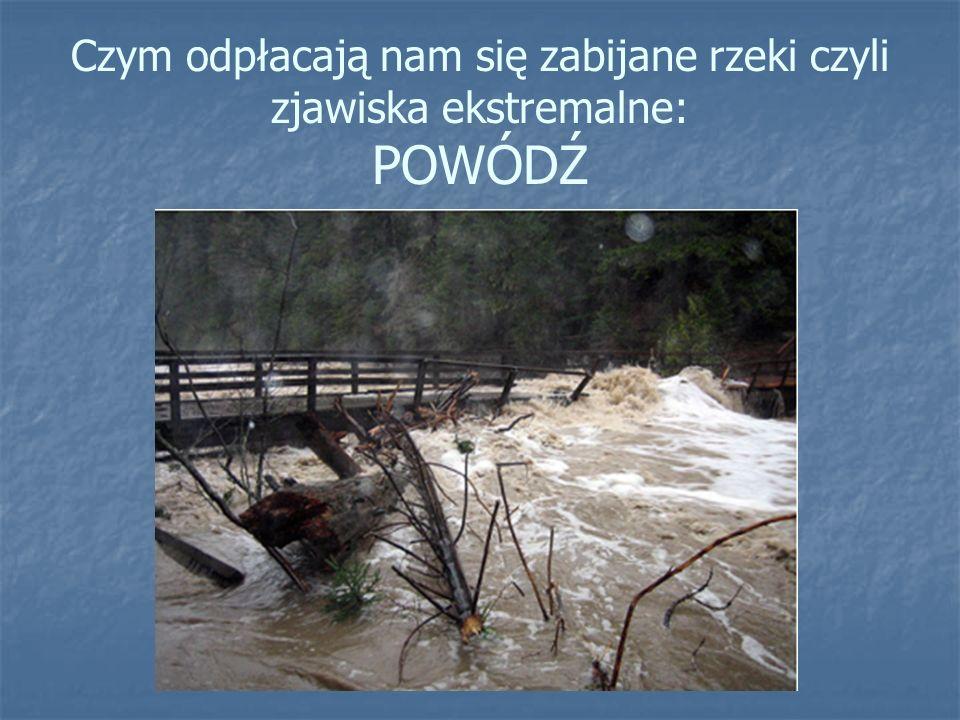 Czym odpłacają nam się zabijane rzeki czyli zjawiska ekstremalne: POWÓDŹ