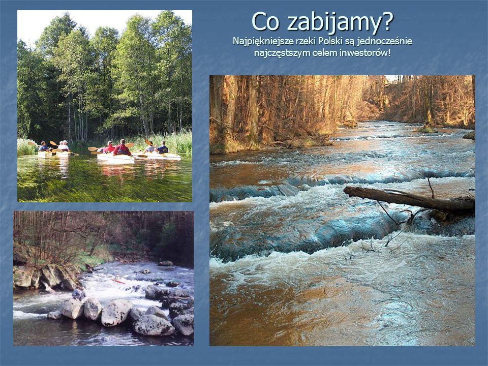 Co zabijamy? Najpiękniejsze rzeki Polski są jednocześnie najczęstszym celem inwestorów!