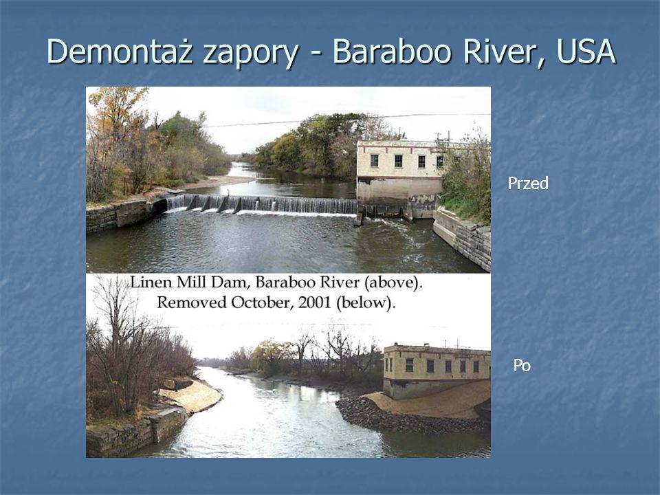 Demontaż zapory - Baraboo River, USA Po Przed