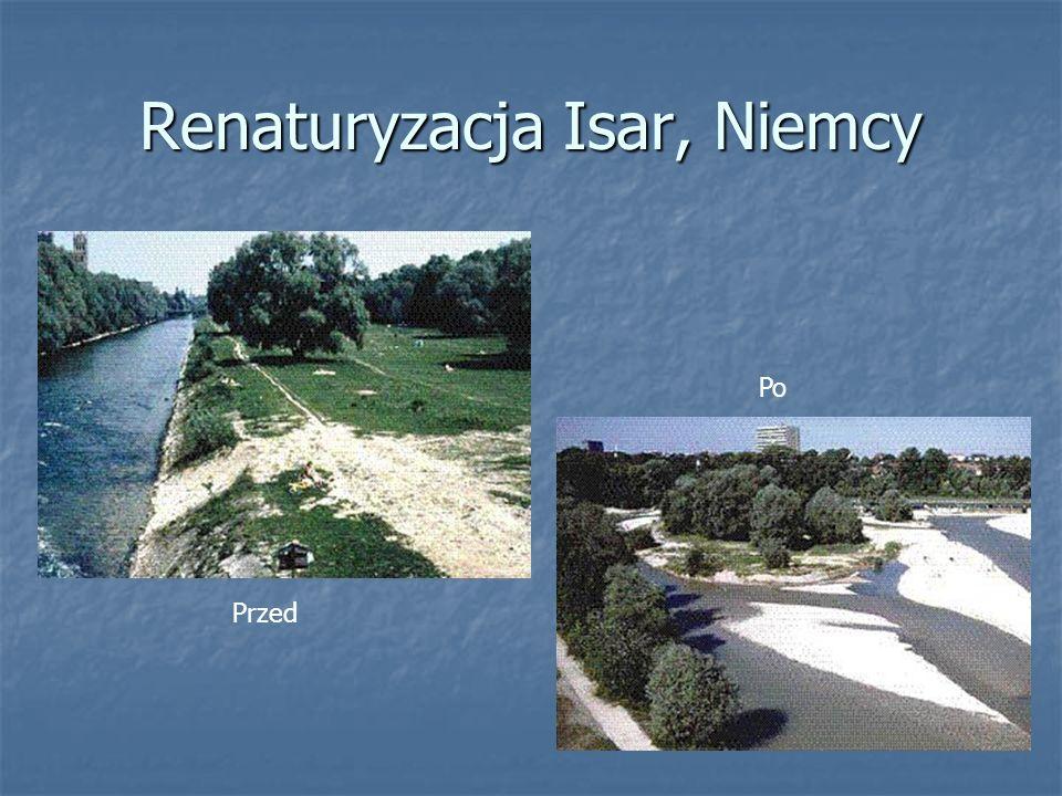 Renaturyzacja Isar, Niemcy Przed Po