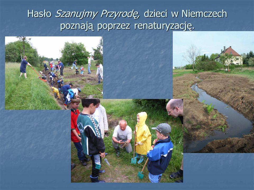 Hasło Szanujmy Przyrodę, dzieci w Niemczech poznają poprzez renaturyzację.