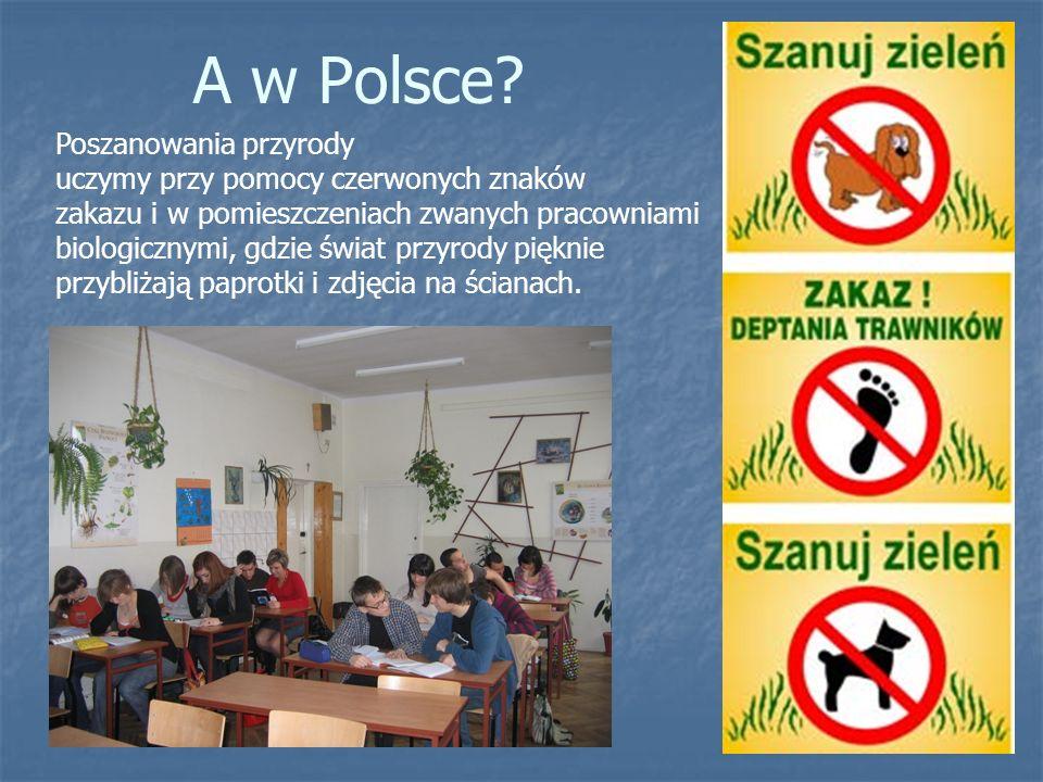 A w Polsce? Poszanowania przyrody uczymy przy pomocy czerwonych znaków zakazu i w pomieszczeniach zwanych pracowniami biologicznymi, gdzie świat przyr