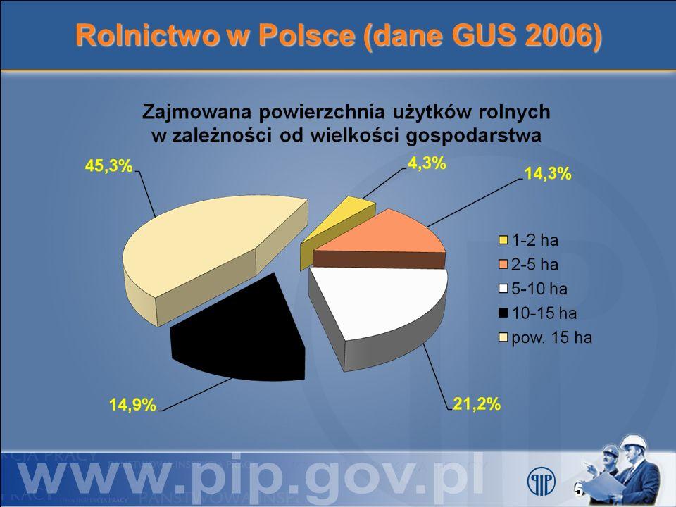 Rolnicy w Polsce (dane GUS 2002) Ogółem 3,39 mln 1,03 mln 344 tys.
