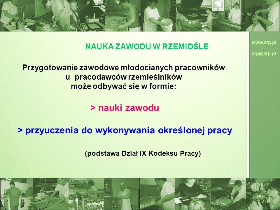 www.zrp.pl zrp@zrp.pl NAUKA ZAWODU W RZEMIOŚLE Przygotowanie zawodowe młodocianych pracowników u pracodawców rzemieślników może odbywać się w formie: