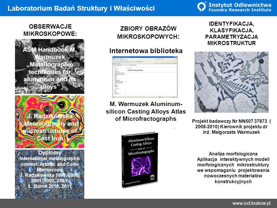 Wyniki www.iod.krakow.pl Laboratorium Badań Struktury i Właściwości ZBIORY OBRAZÓW MIKROSKOPOWYCH : IDENTYFIKACJA, KLASYFIKACJA, PARAMETRYZACJA MIKROS