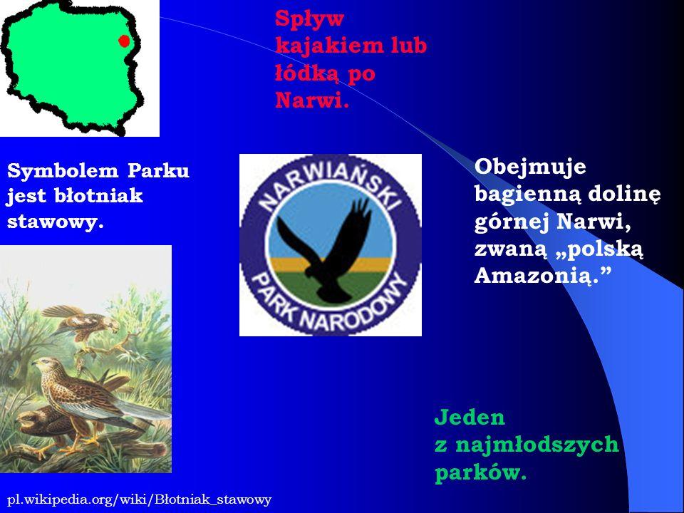Symbolem Parku jest błotniak stawowy. Obejmuje bagienną dolinę górnej Narwi, zwaną polską Amazonią. pl.wikipedia.org/wiki/Błotniak_stawowy Spływ kajak