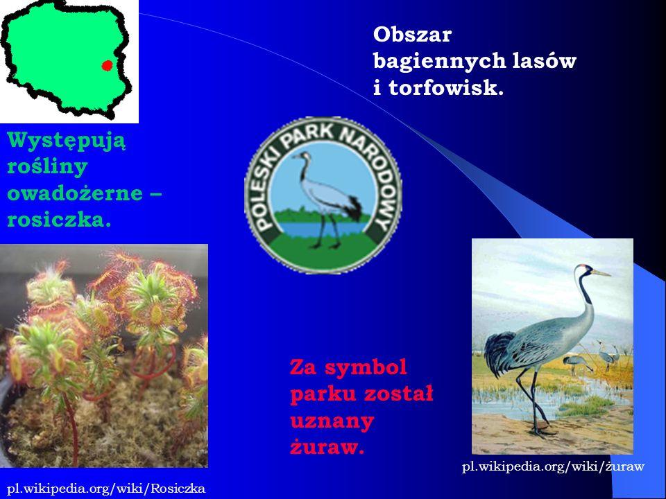 Obszar bagiennych lasów i torfowisk. Występują rośliny owadożerne – rosiczka. Za symbol parku został uznany żuraw. pl.wikipedia.org/wiki/żuraw pl.wiki