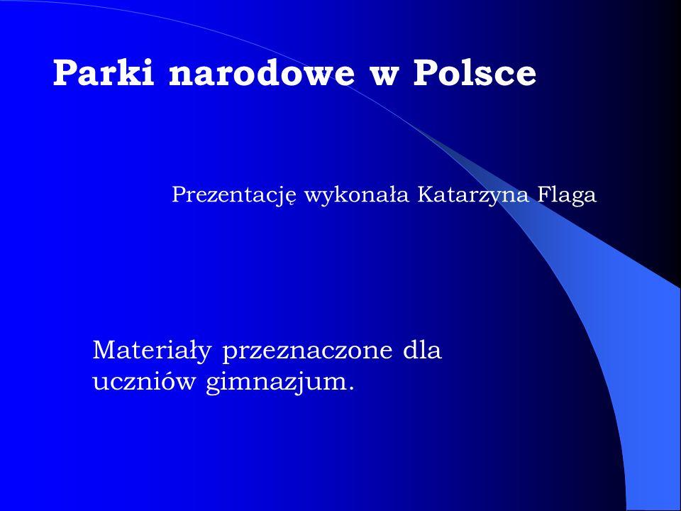 Materiały przeznaczone dla uczniów gimnazjum. Prezentację wykonała Katarzyna Flaga Parki narodowe w Polsce