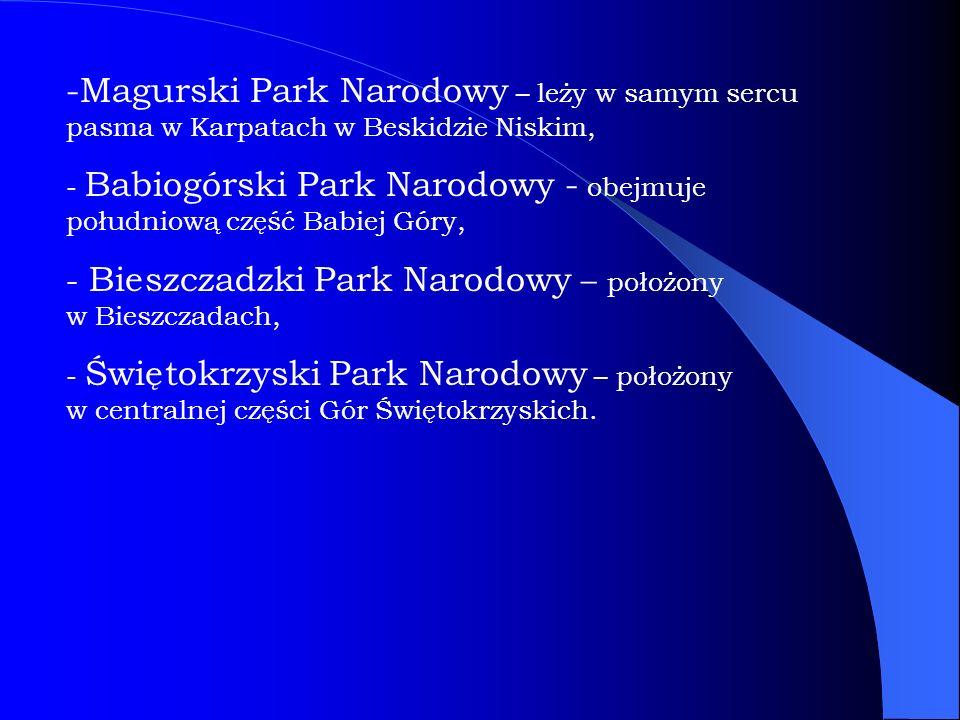 -Magurski Park Narodowy – leży w samym sercu pasma w Karpatach w Beskidzie Niskim, - Babiogórski Park Narodowy - obejmuje południową część Babiej Góry