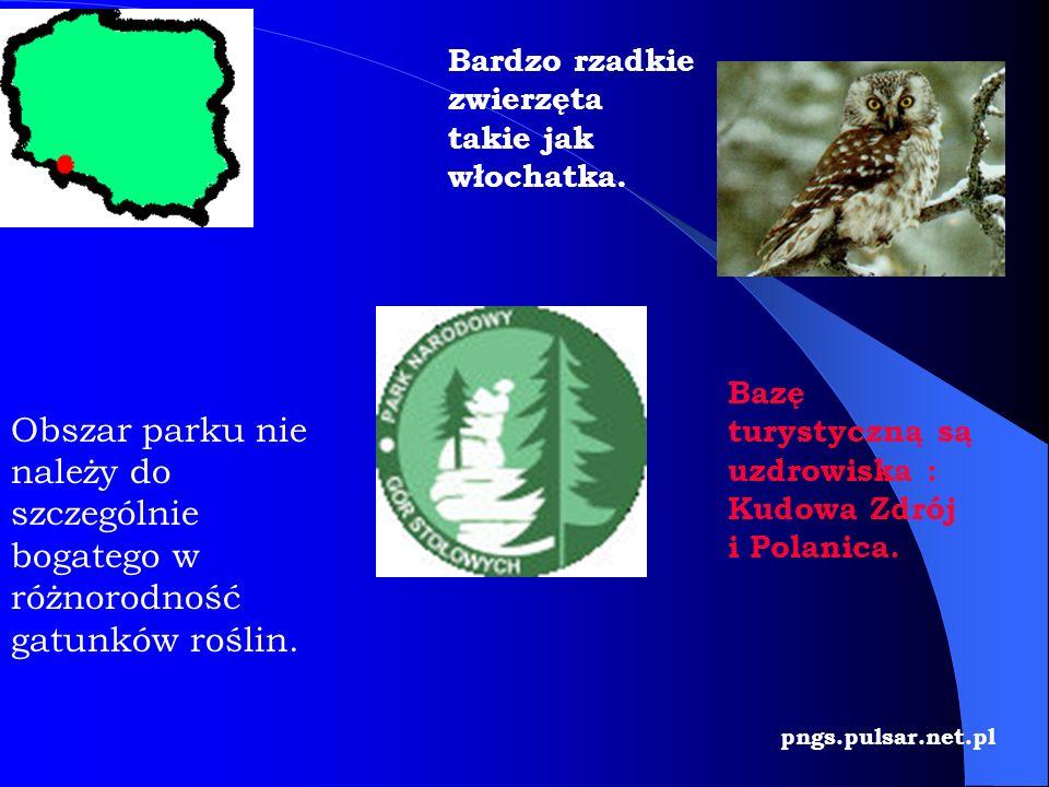 pngs.pulsar.net.pl Bazę turystyczną są uzdrowiska : Kudowa Zdrój i Polanica. Bardzo rzadkie zwierzęta takie jak włochatka. Obszar parku nie należy do