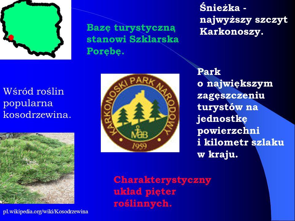 Park o największym zagęszczeniu turystów na jednostkę powierzchni i kilometr szlaku w kraju. Charakterystyczny układ pięter roślinnych. Śnieżka - najw