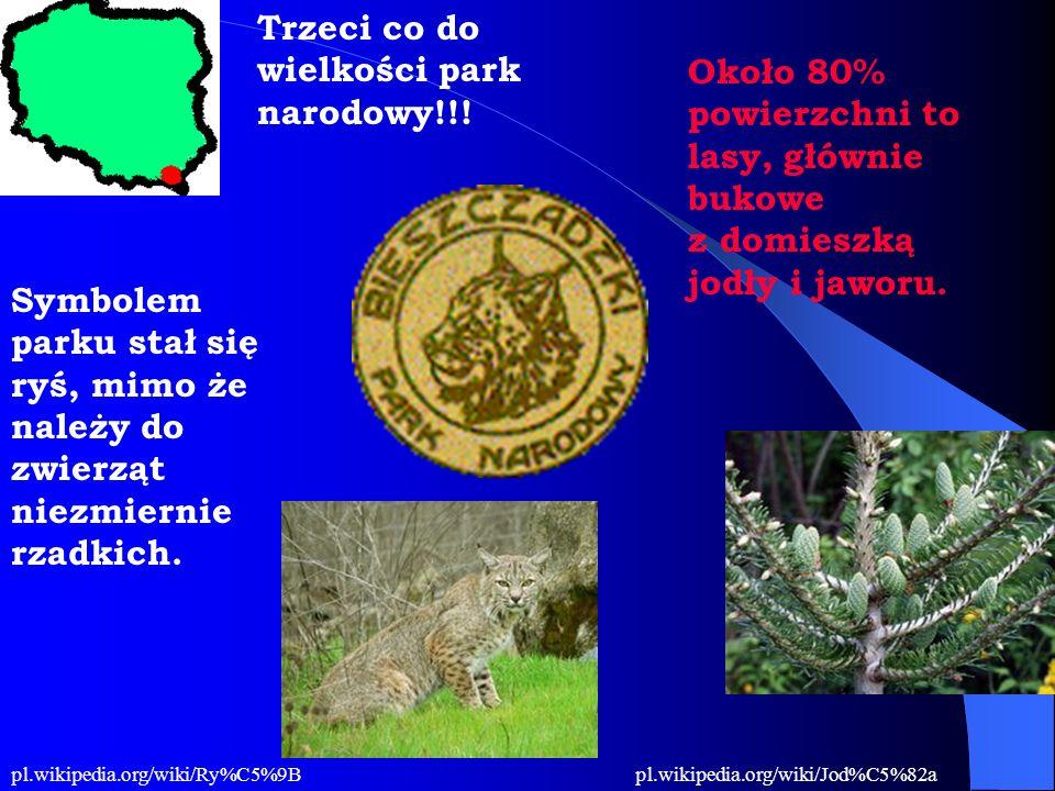 Trzeci co do wielkości park narodowy!!! Około 80% powierzchni to lasy, głównie bukowe z domieszką jodły i jaworu. Symbolem parku stał się ryś, mimo że