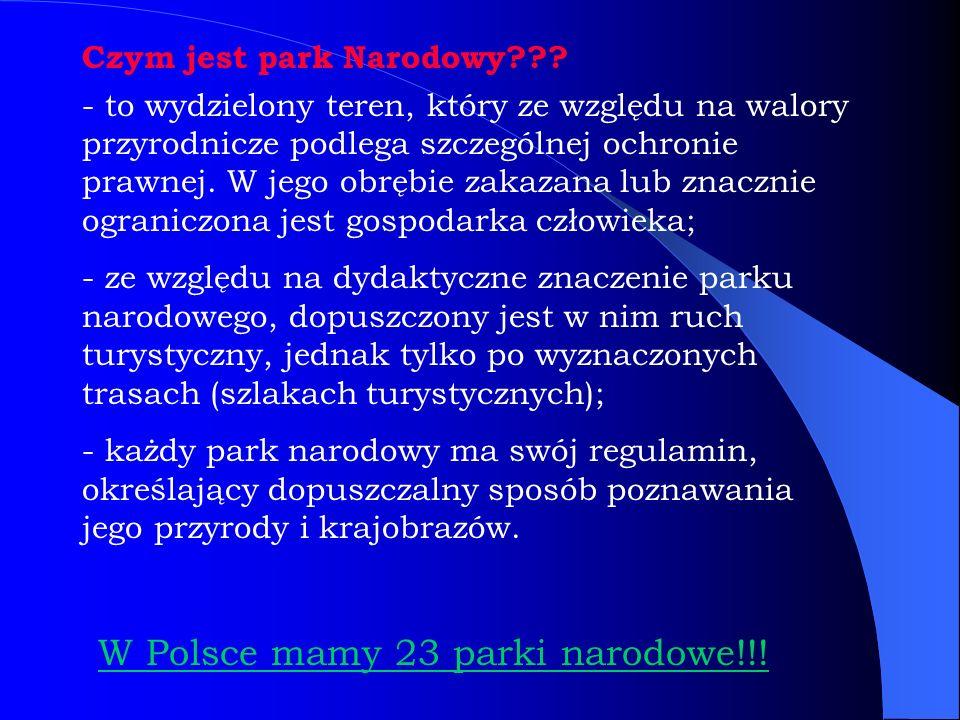 Czym jest park Narodowy??? W Polsce mamy 23 parki narodowe!!! - to wydzielony teren, który ze względu na walory przyrodnicze podlega szczególnej ochro