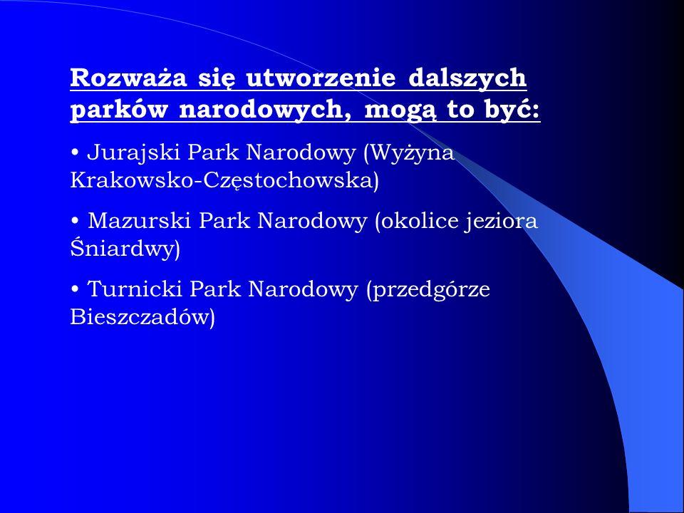 Rozważa się utworzenie dalszych parków narodowych, mogą to być: Jurajski Park Narodowy (Wyżyna Krakowsko-Częstochowska) Mazurski Park Narodowy (okolic