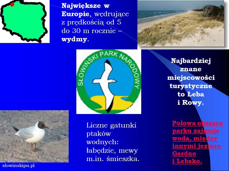 P a r k i n i z i n n e: Biebrzański Park Narodowy Narwiański Park Narodowy Poleski Park Narodowy Kampinowski Park Narodowy Białowieski Park Narodowy