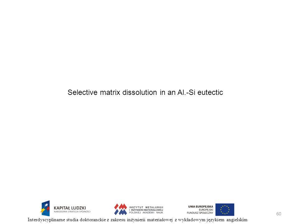 60 Interdyscyplinarne studia doktoranckie z zakresu inżynierii materiałowej z wykładowym językiem angielskim Selective matrix dissolution in an Al.-Si