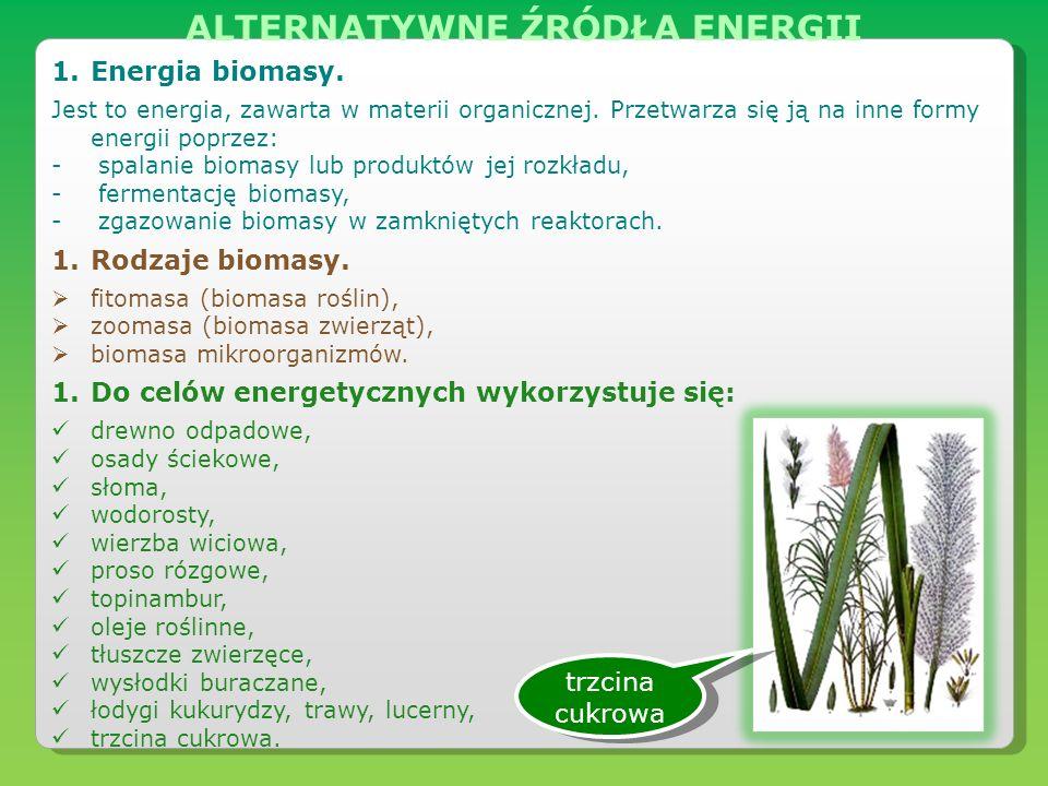 1.Energia biomasy. Jest to energia, zawarta w materii organicznej. Przetwarza się ją na inne formy energii poprzez: - spalanie biomasy lub produktów j