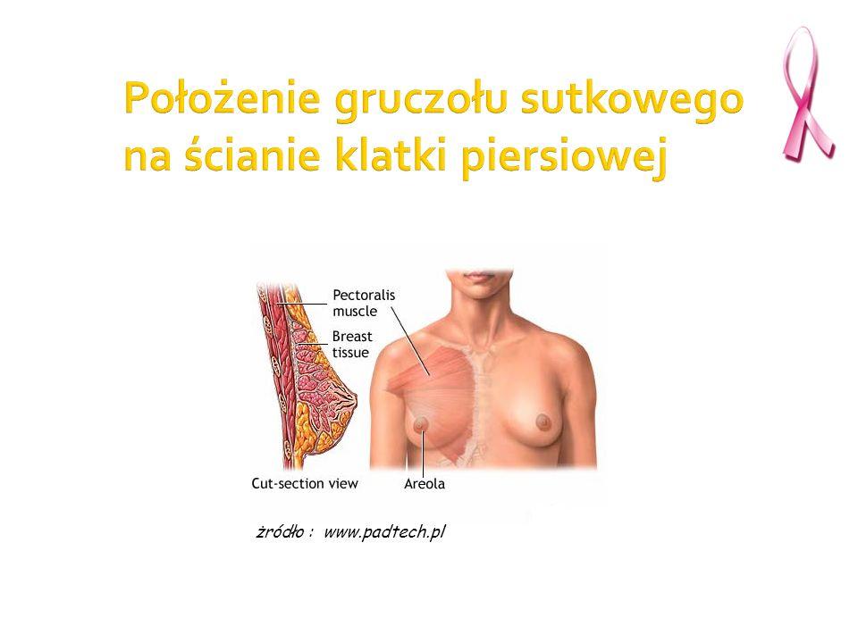żródło : www.padtech.pl