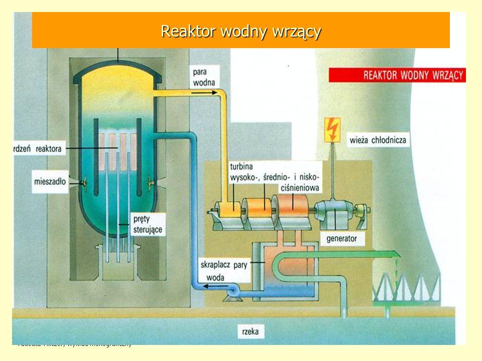 Tadeusz Hilczer, wykład monograficzny 106 Reaktor wodny wrzący