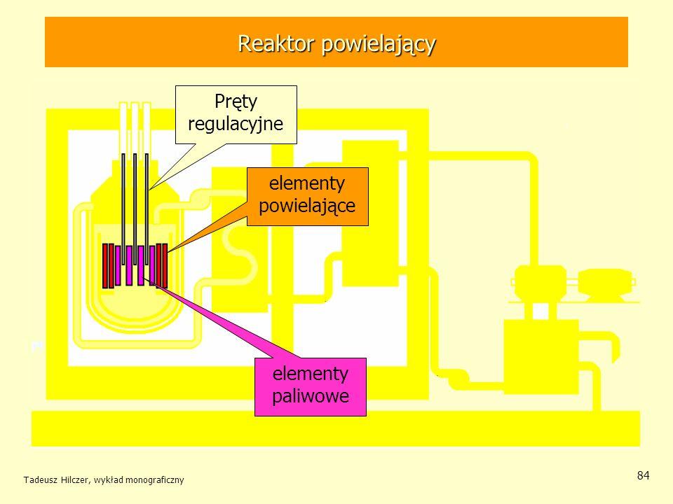 Tadeusz Hilczer, wykład monograficzny 84 Reaktor powielający elementy powielające elementy paliwowe Pręty regulacyjne