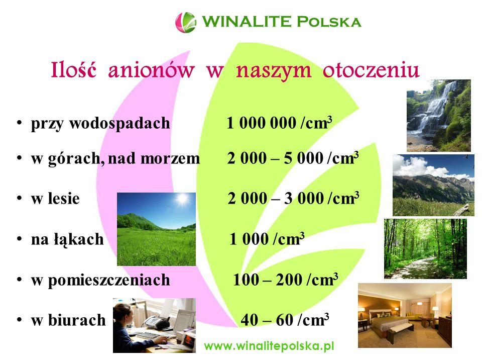 Aniony wpływają korzystnie na system nerwowy www.winalitepolska.pl WINALITE Polska - Poprawiają stan systemu nerwowego gdy organizm jest narażony na długotrwały stres - Wspomagają zachowanie ujemnego ładunku w komórkach nerwowych